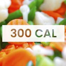 dieta 300 calorias