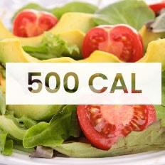 dieta 500 calorias