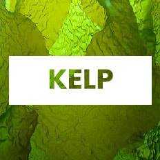 superalimento kelp