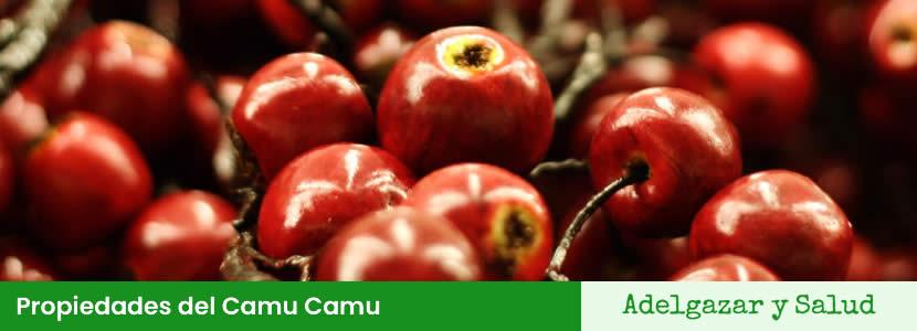 Propiedades del Camu Camu