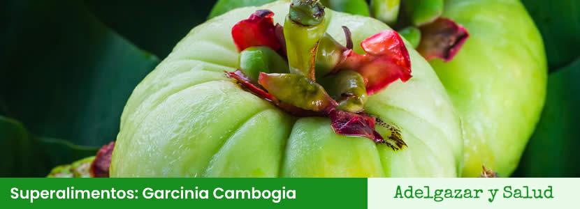 Superalimentos Garcinia Cambogia