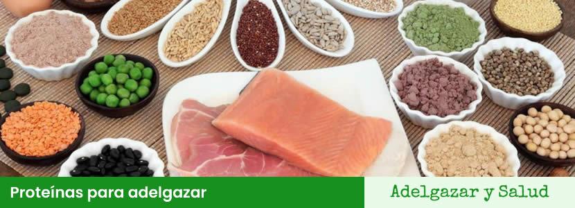 proteinas para adelgazar